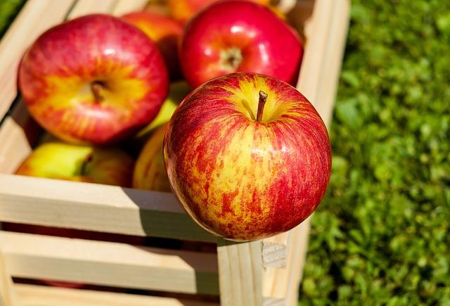 Nejčerstvější ovoce na našem stole