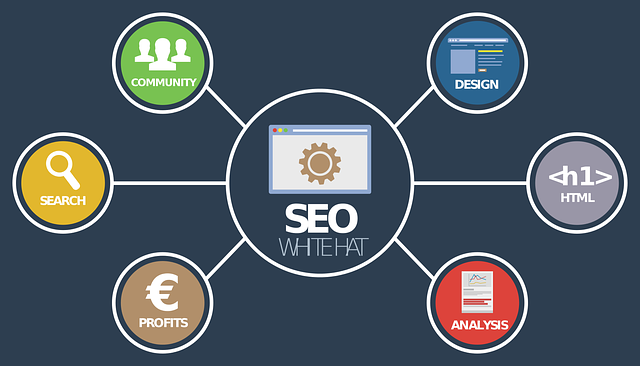 seo analýza, diagram